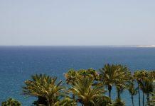 الزراعة بماء البحر، هل تصبح مساهم قوى فى حل مشكلة الغذاء والمياه ؟