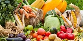 خصائص الزراعة البيولوجية و مميزاتها