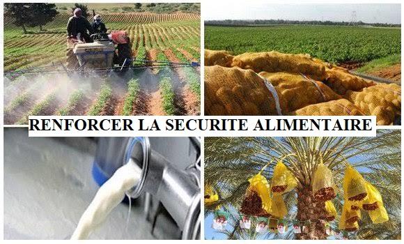 RENFORCER LA SECURITE ALIMENTAIRE ALGERIENNE