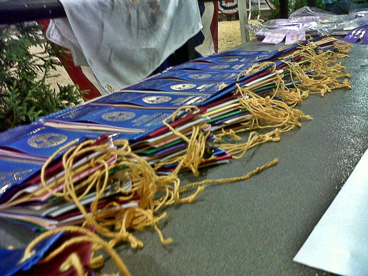 Ribbons everywhere