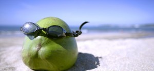 Coconut-Face-In-Summer-1728x800_c