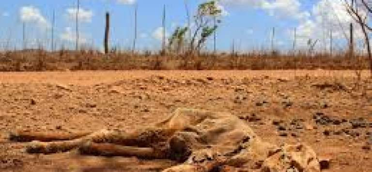 Soil Mantle: The Basic Life Support System
