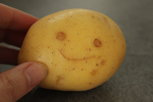 Management of Common Scab of Potato