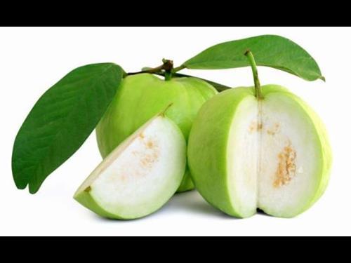 Guava2 (Copy)