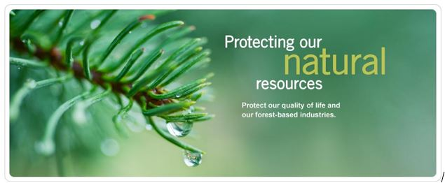 how can we preserve our natural resources