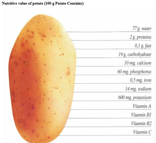 Production technology of potato for yield enhancement per unit area in Pakistan