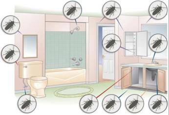 where_do_roaches_hide_diagram-1 (Copy)