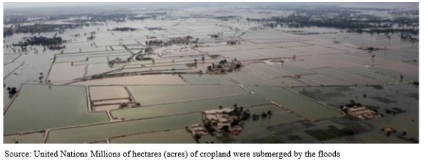 impact of floods - 7