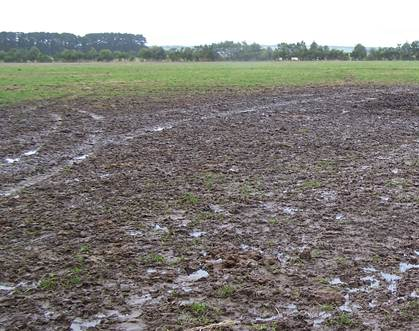 Problems of Crop Production in Water Logged Soils