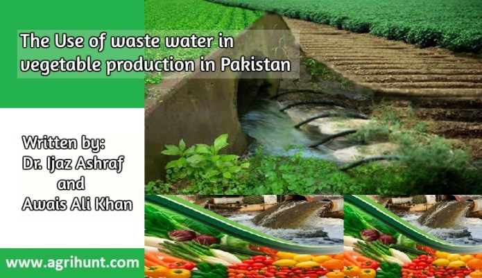 The Use of waste water in vegetable production in Pakistan