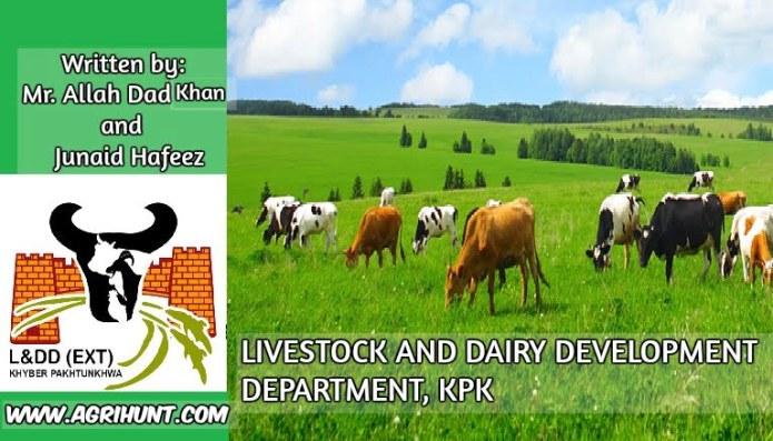 LIVESTOCK AND DAIRY DEVELOPMENT DEPARTMENT, KPK