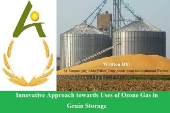 Ozone for grain storage