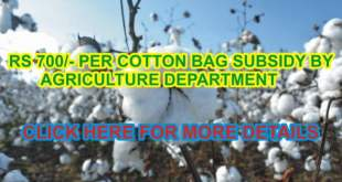 Punjab-govt-to-provide-subsidy-on-cotton-seed