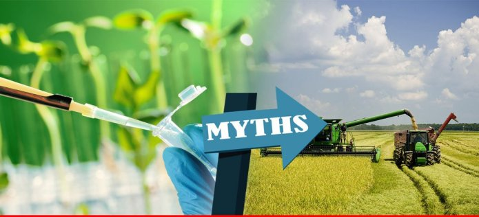Three big myths about modern agriculture