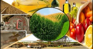 agro-based-industries-and-economy-of-pakistan