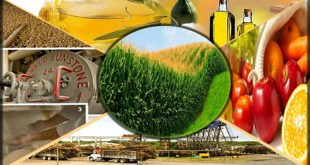 agro-based-industries-and-economy-of-pakistan-by-saad-ur-rehman-malik