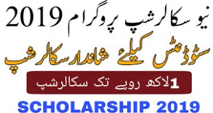 PEEF-Master-Scholarship-2019–Punjab-Educational-Endowment-Fund-Saad-ur-Rehman-Malik