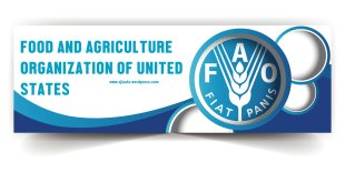 FAO-Jobs-in-Pakistan-by-saad-ur-rehman-malik