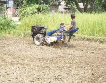 Gobinda's son preparing a field for vegetables by purchased power-tiller