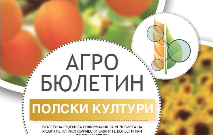 АГРО БЮЛЕТИН ПОЛСКИ КУЛТУРИ №7