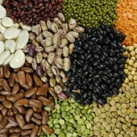Kharif crops, Vegetables, Fruits and Pulses
