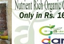 Nutrient Rich Organic Compost for Kitchen Gardening in Pakistan