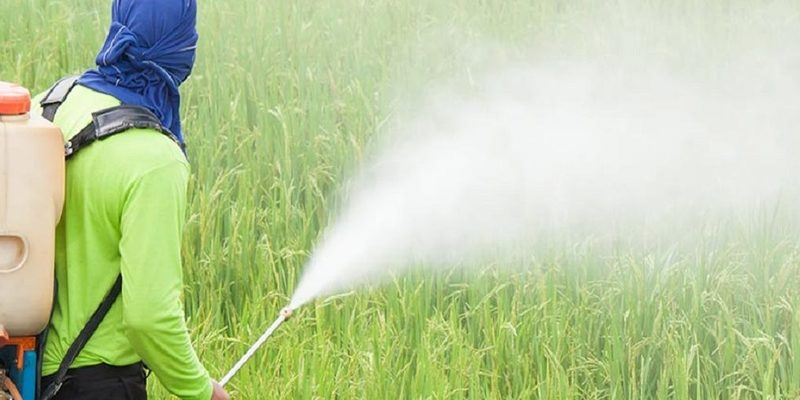 Agriculture Officers Asked To Take Action Against Spurious Pesticides, Fertilizers