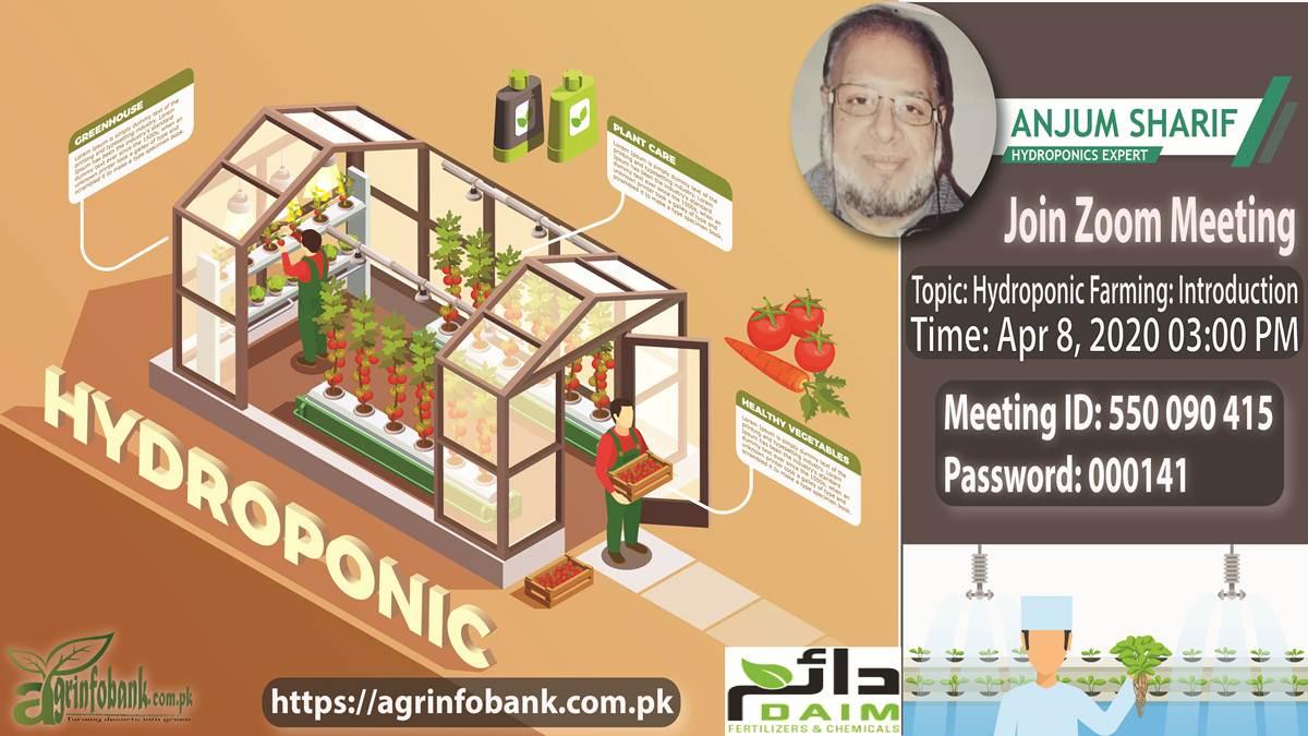 Hydroponics farming: Online training in Pakistan