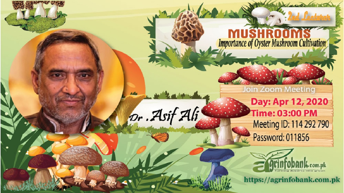 """Training on """"Importance of Oyster Mushroom Cultivation by Dr.  M.  Asif Ali"""""""