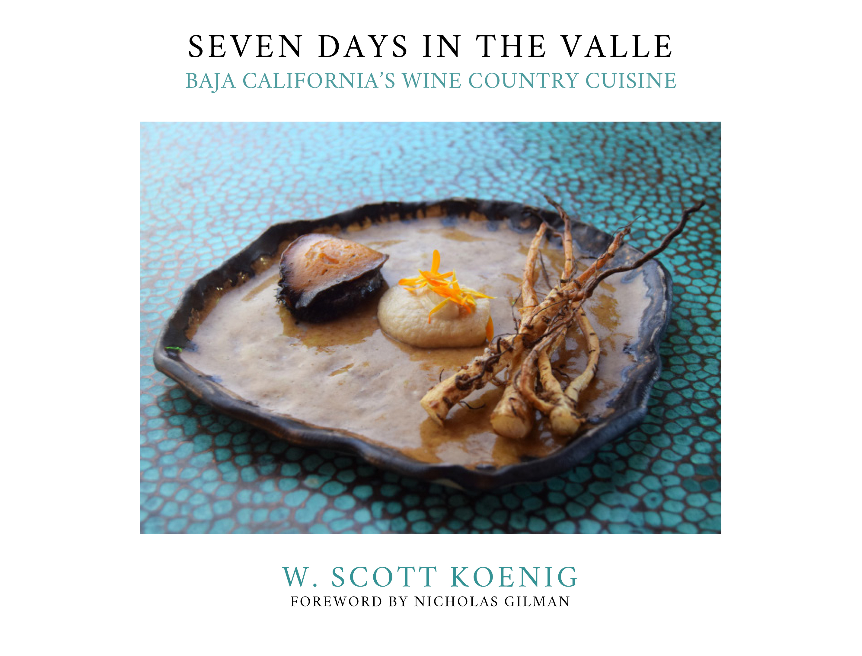 seven days in the valle, valle de guadalupe, guadalupe valley, w. scott koenig, valle de guadalupe book
