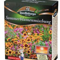 Sommerblumenmischung ohne Gräser für ca. 100m²