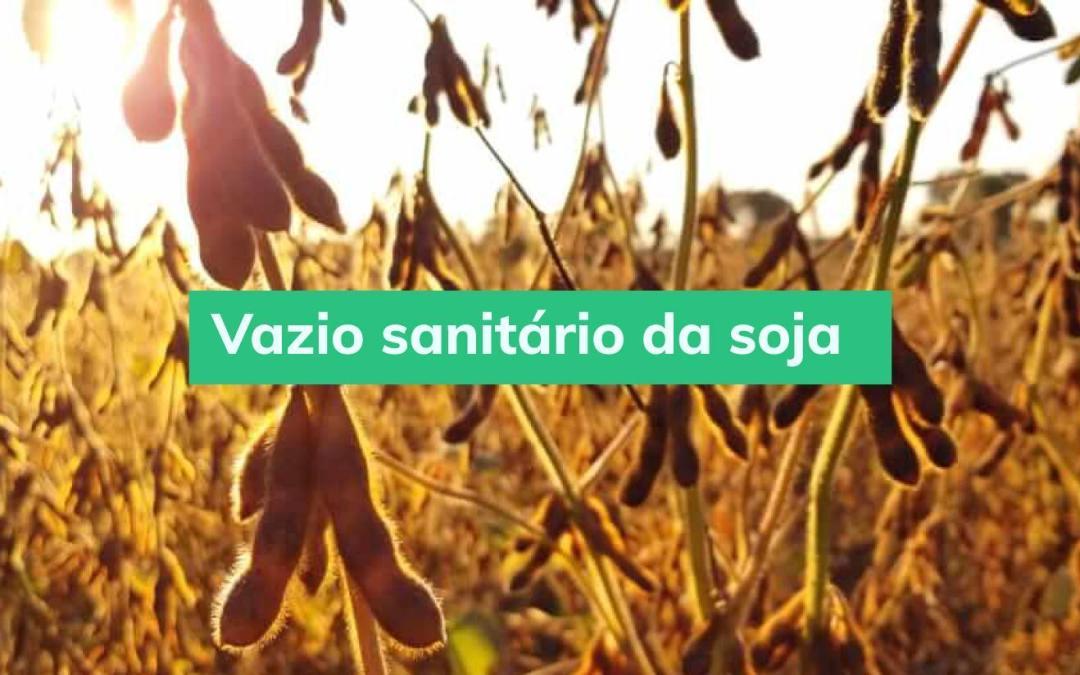 Vazio sanitário: qual é sua importância para a soja?