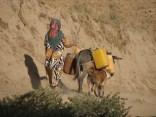 Tajikistan 2013 © Agriversal Ltd
