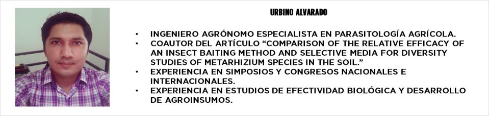 URBINO ALVARADO