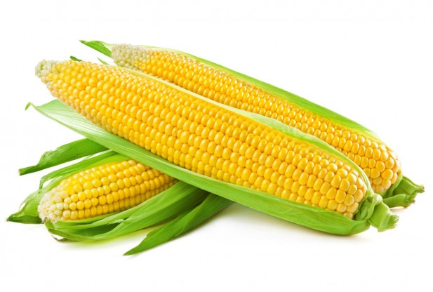 Image result for corn