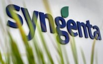 Image result for syngenta