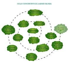 Fonte: Agroecologia - Plante essa idea, KAS 2007 (Desenho: Fernando Lima)