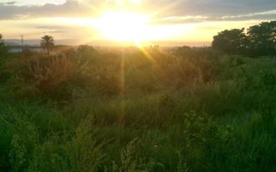 O futuro da agricultura sem petróleo: precisa mudar antes que seja tarde