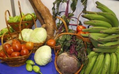 O dilema da alimentação: entre fome e obesidade