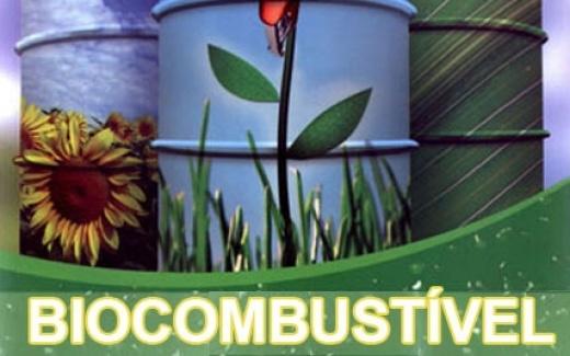 biocombustivel 7777