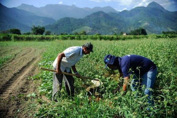 AAA agricultura-familiar