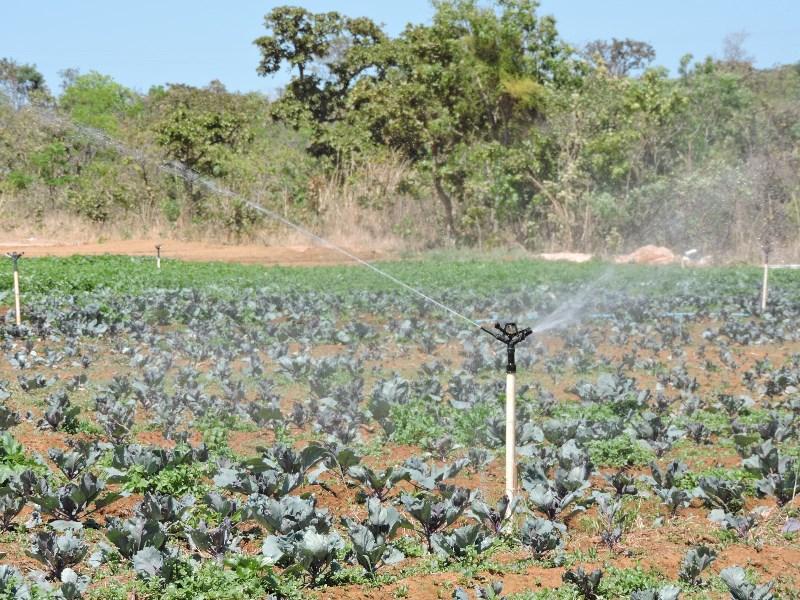 a irrigacao df