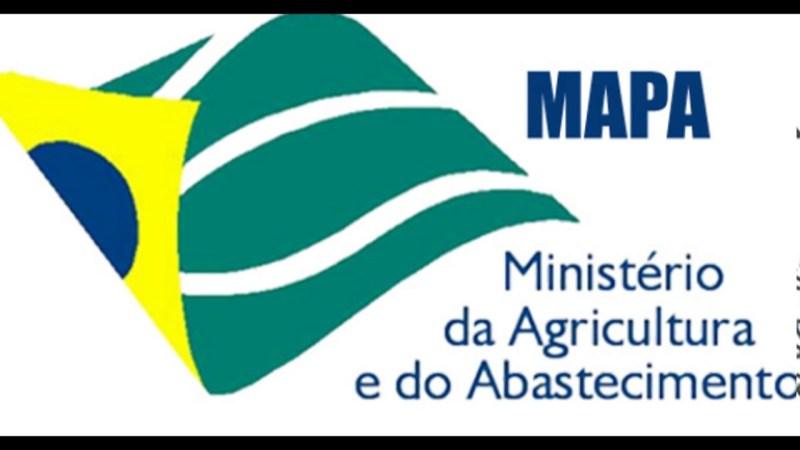 a _ logo mapa