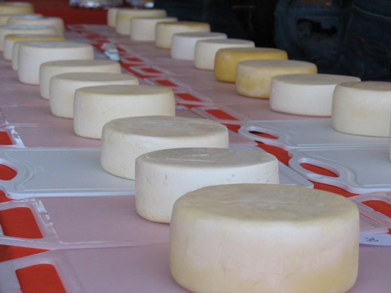 a _ queijo artesanal 2