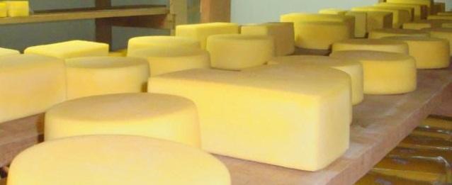 a _ queijos 7 - 12
