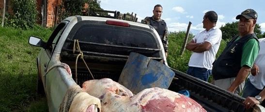 a apreensao carne clandestina df