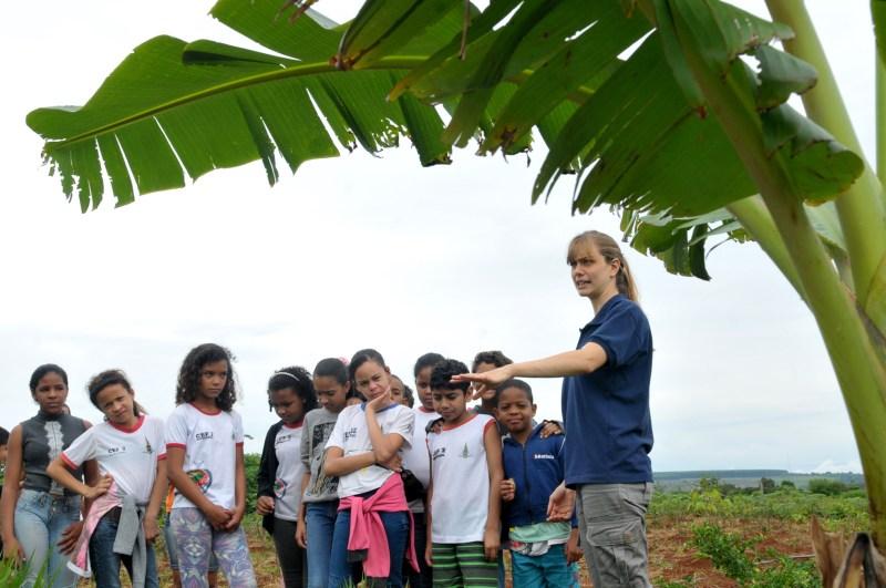 Bacia do Pipiripau recebe 1,2 mil mudas de viveiros escolares