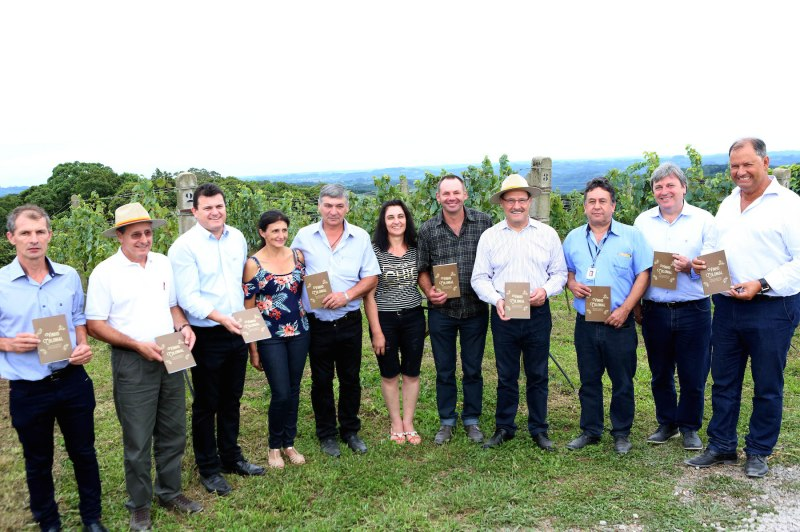 produtores-vinho-sartori