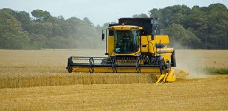 maquina agricola colheita