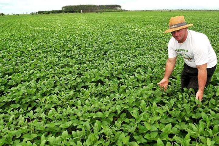 produtor rural agencia brasilia